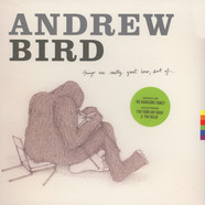Andrew Bird - Things Were Really Great Here, Sort Of