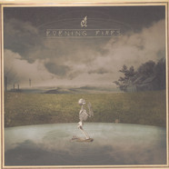 Evening Fires - Where I've Been Is Places And What I've Seen Is Things Black Vinyl Edition