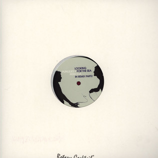 PUPKULIES & REBECCA - Looking For The Sea In Wareika Remixes - 12 inch x 1