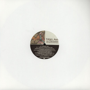 YOTAM AVNI - That's What The World Needs Feat. Chris Dockins - 12 inch x 1