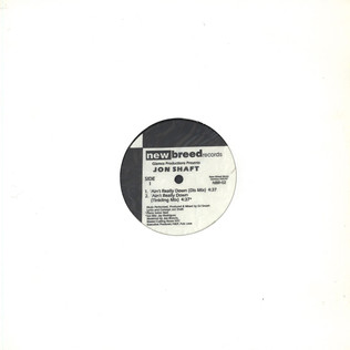 GLAMCO PRODUCTIONS PRESENTS JON SHAFT - Ain't Really Down - 12 inch x 1