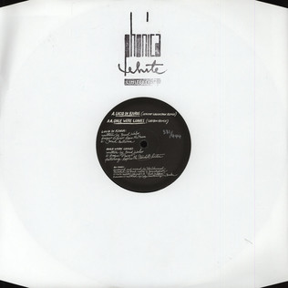 PICK A PIPER - Lucid In Fjords Jeremy Greenspan Remix - 12 inch x 1