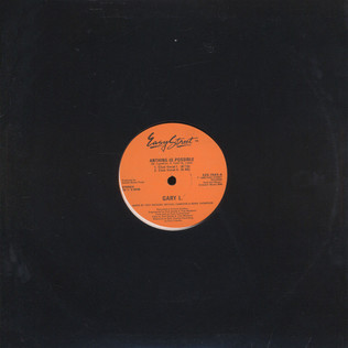 GARY LITTLE - Anything Is Possible - 12 inch x 1