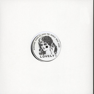 JOSEPH SALZIG / FIZZY VEINS - Echos All Over The World - 12 inch x 1