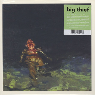Image result for big thief 7 inch