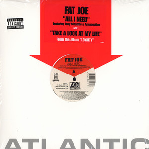 fat joe   all i need feat