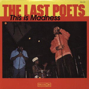 LAST POETS - This is madness - LP
