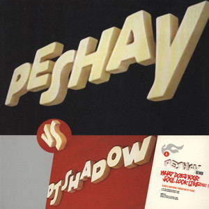 DJ SHADOW VS. PESHAY - What does your soul look like remix - Maxi x 1