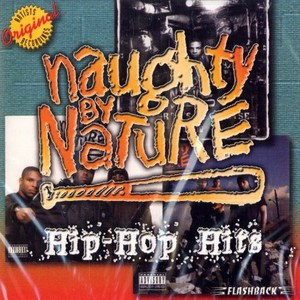 NAUGHTY BY NATURE - Hip hop hits - CD