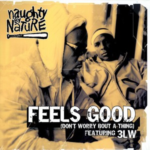 NAUGHTY BY NATURE - Feels good - Maxi x 1