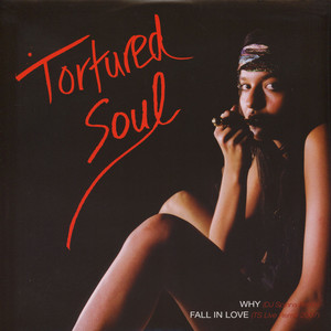 TORTURED SOUL - Why DJ Spinna remix - 12 inch x 1