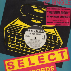 HIP HOUSE SYNDICATE - Free James Brown - 12 inch x 1