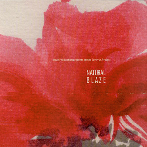 JAMES TONEY JR. PROJECT - Natural Blaze - LP x 2