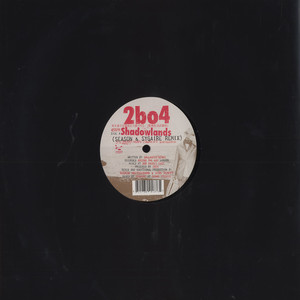 2BO4 (TWO BANKS OF FOUR) - Shadowlands Season & Sygaire remix - 12 inch x 1
