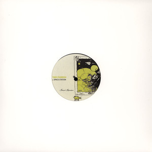 THEO PARRISH - Going Through Changes - 12 inch x 1