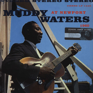 MUDDY WATERS - Muddy Waters At Newport - 33T