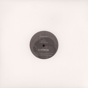 PATRICE SCOTT - Analog Dreams - 12 inch x 1