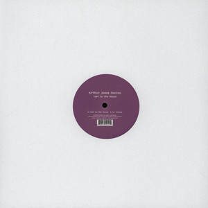 ARTHUR JAMES DENTON - Lost In The Dance - 12 inch x 1