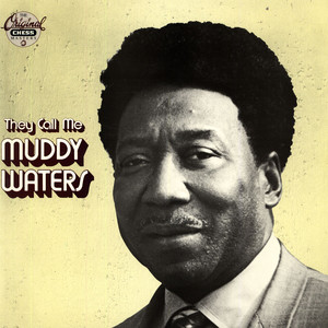 MUDDY WATERS - They Call Me Muddy Waters - 33T
