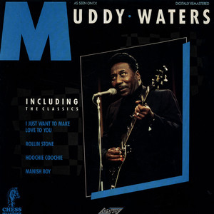 MUDDY WATERS - Muddy Waters - 33T
