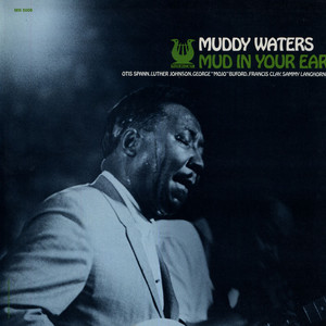 MUDDY WATERS - Mud In Your Ear - 33T
