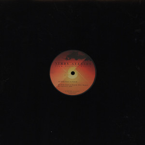 SIMON SVENSON - From Start To Finish - 12 inch x 1