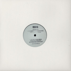 SCRIMSHIRE - Everything You Say LV & Scrimshire Mixes - 12 inch x 1