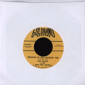 HOP WILSON - Rockin' In The Cocanut Top - 7inch x 1