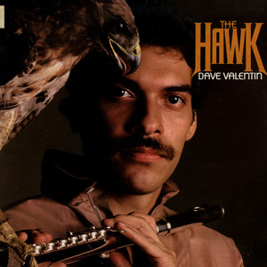 DAVE VALENTIN - The Hawk - 33T