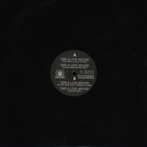 2 BEARS - Take A Look Around Remixes - 12 inch x 1