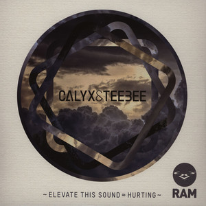 CALYX & TEEBEE - Elevate This Sound - Maxi x 1