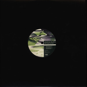 ANDY VAZ - Don't Lose Your Mind - 12 inch x 1