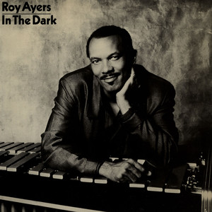 ROY AYERS - In The Dark - 12 inch x 1