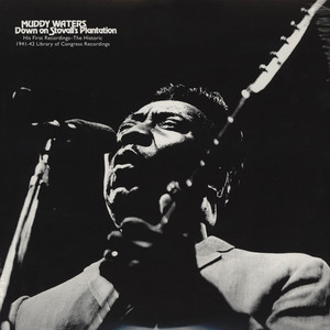 MUDDY WATERS - Down On Stovall's Plantation - 33T