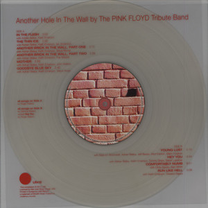 PINK FLOYD TRIBUTE BAND, THE - Another Hole In The Wall - 33T + bonus