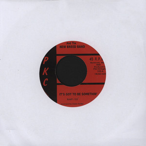 AALON BUTLER & THE NEW BREED BAND - It's Got To Be Somethin' - 7inch x 1