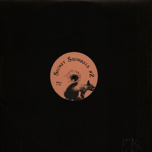 SECRET SQUIRRELS - #2 - 12 inch x 1