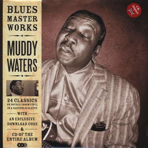 MUDDY WATERS - Blues Master Works - LP x 2