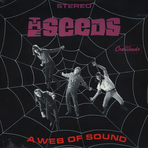 SEEDS - A Web Of Sound - LP