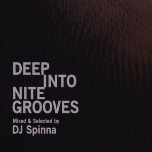 DJ SPINNA - Deep Into Nite Grooves - CD