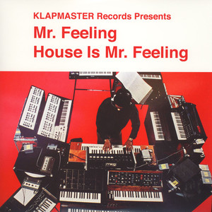 MR. FEELING - House Is Mr. Feeling - LP x 2