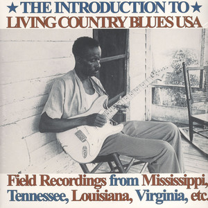 V.A. - Introduction To Living Country Blues - LP x 2