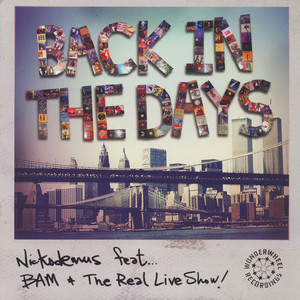 NICKODEMUS - Back In The Days - 12 inch x 1
