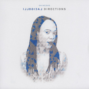 SHINEDOE - Illogical Directions - LP x 2