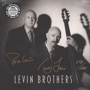 LEVIN BROTHERS - Levin Brothers - LP
