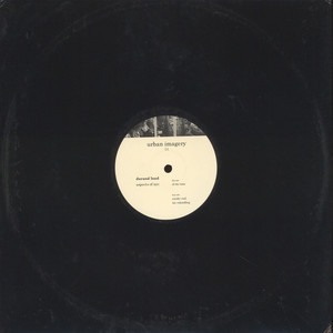 DARAND LAND - Aspects of NYC - 12 inch x 1