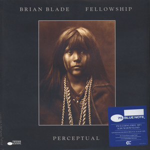 BRIAN BLADE & THE FELLOWSHIP BAND - Perceptual - LP x 2
