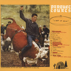 Parquet Courts - Light Up Gold