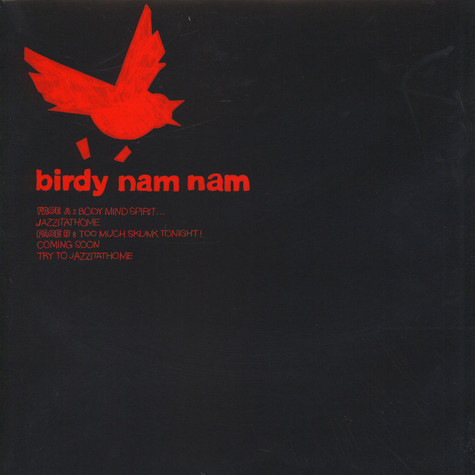 Birdy Nam Nam - Body Mind Spirit