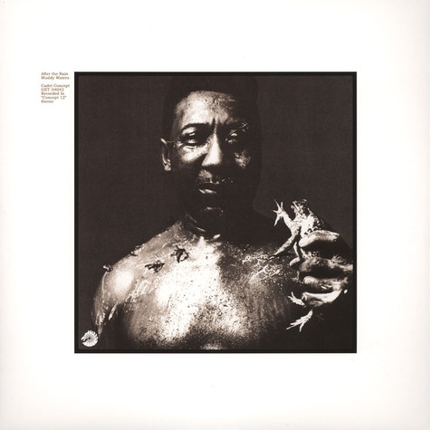 Muddy Waters - After The Rain